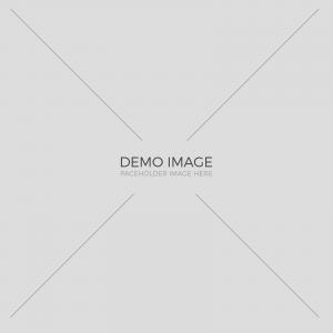 demo-img-1