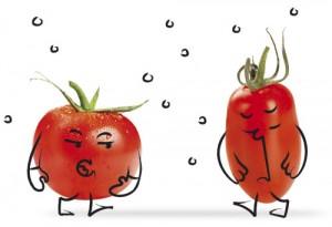 tomate_05
